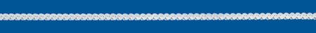 SERPENTINE Silver chain Flat